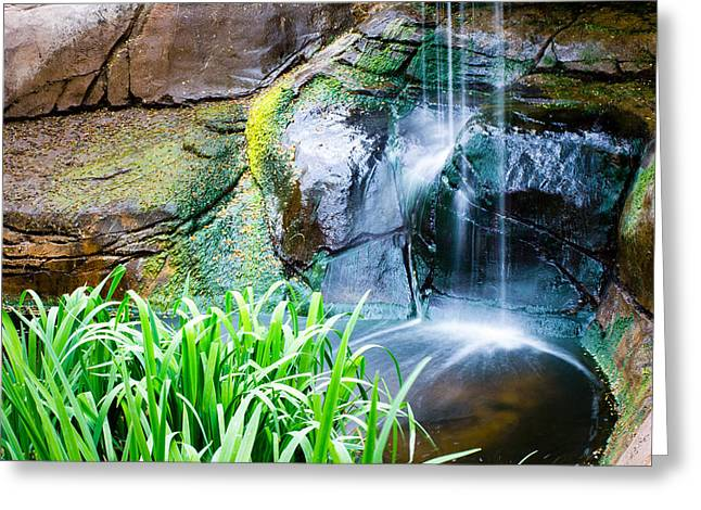 El Paso Zoo Waterfall Long Exposure Greeting Card