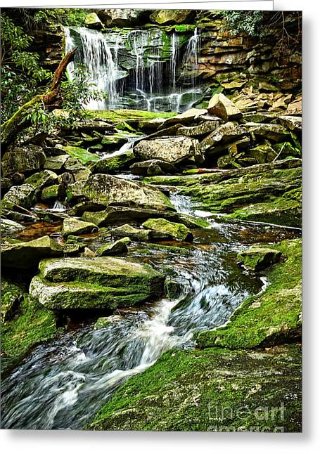 Elakala Falls At Blackwater Falls State Park Greeting Card