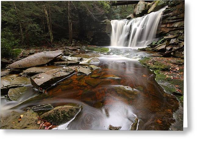 Elakala Falls In West Virginia Greeting Card