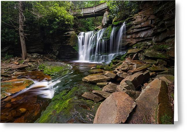 Elakala Falls On Shays Run Blackwater Falls State Park Greeting Card by Rick Dunnuck