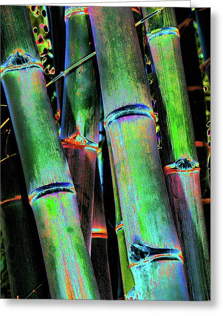 Electric Bamboo 4 Greeting Card
