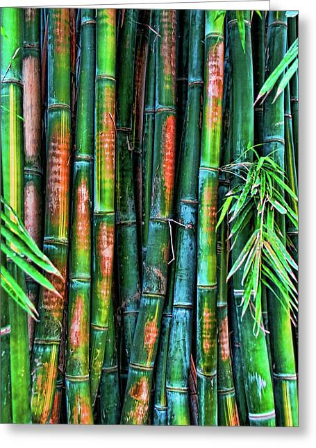 Electric Bamboo 6 Greeting Card