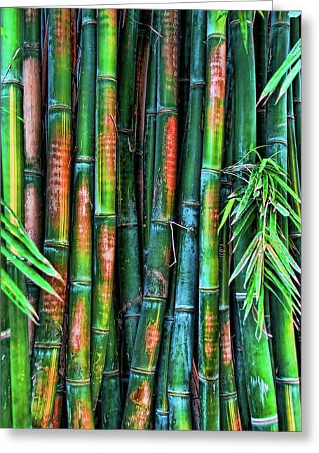 Electric Bamboo 6 Greeting Card