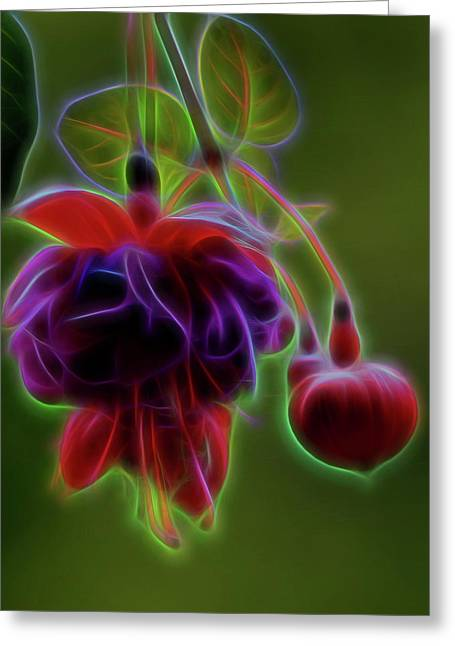 Electric, Glowing  Fushcia Blossom Greeting Card by Joe Lee