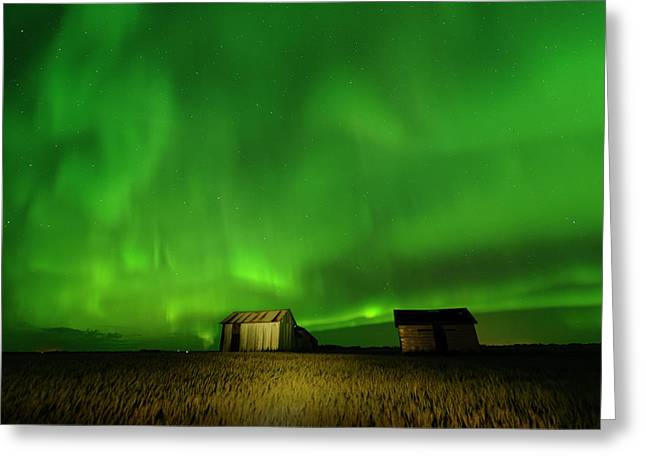 Electric Green Skies Greeting Card