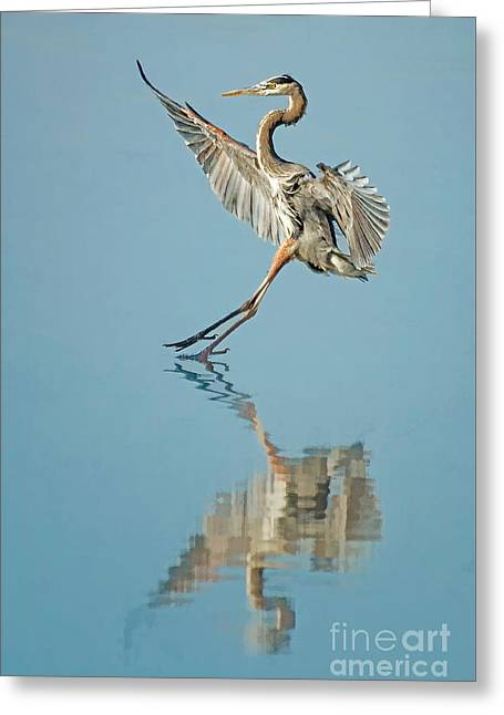 Elegance Greeting Card by Alice Cahill