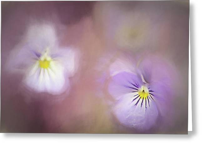 Elegance Of Spring Greeting Card by Darren Fisher