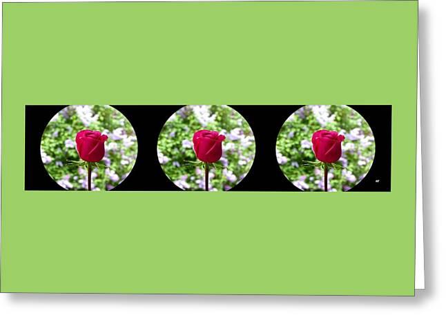 Elegant Rose Trio 1 Greeting Card by Will Borden