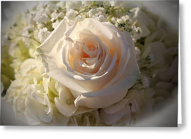 Elegant White Roses Greeting Card by Cynthia Guinn