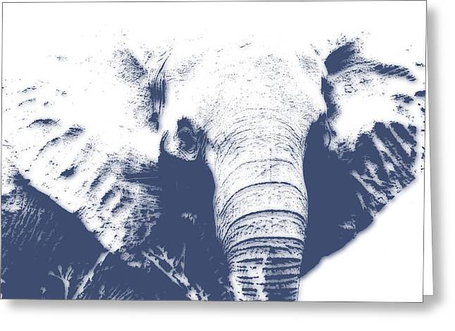 Elephant 4 Greeting Card by Joe Hamilton