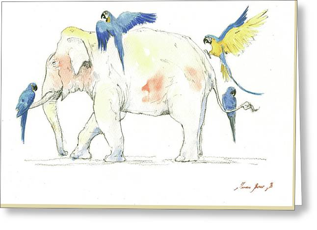 Elephant And Parrots Greeting Card