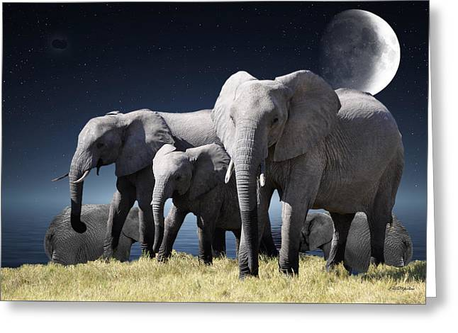 Elephant Bath Time Greeting Card by Ericamaxine Price