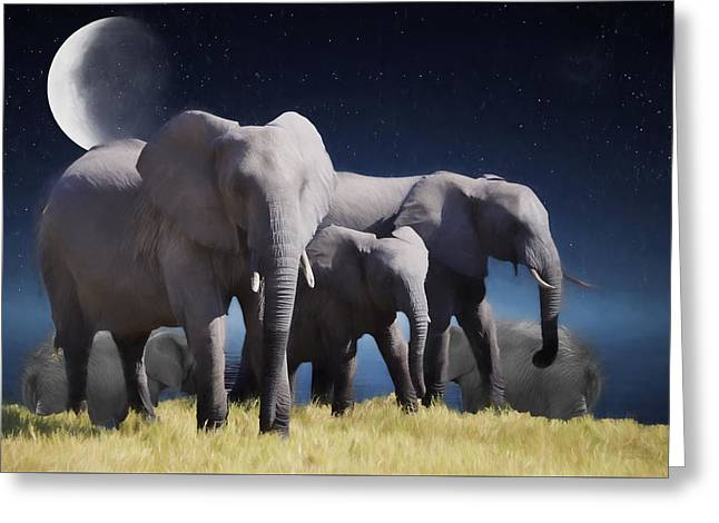 Elephant Bath Time Painting Greeting Card by Ericamaxine Price