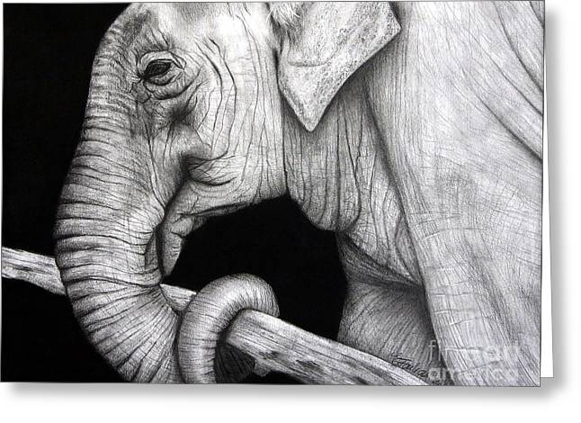 Elephant Greeting Card by Erika Farkas