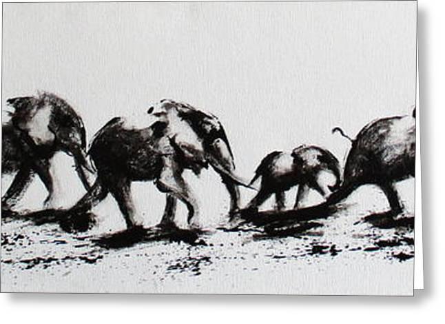 Elephant Fun Greeting Card