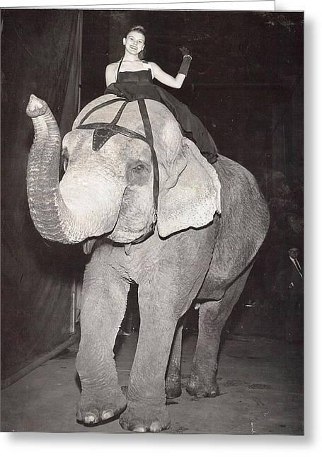 Greeting Card featuring the photograph Elephant Girl by Judyann Matthews