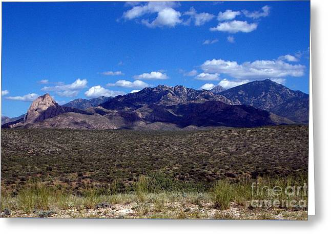 Elephant Head And Santa Rita Mountains Greeting Card by Jerry Bokowski