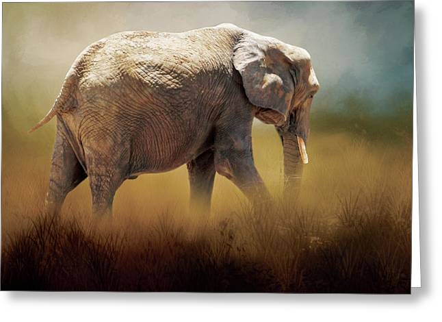 Greeting Card featuring the photograph Elephant In The Mist by David and Carol Kelly