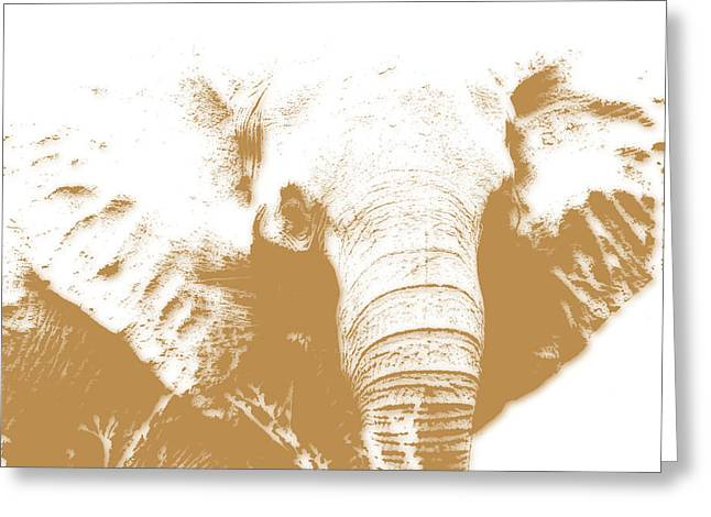 Elephant Greeting Card by Joe Hamilton