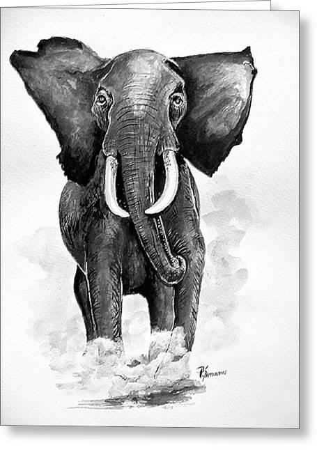 Elephant Greeting Card by Paul Sandilands