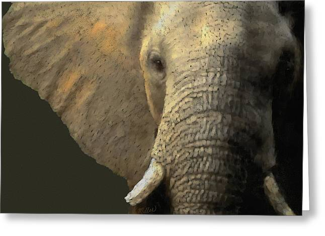 Elephant Portrait Greeting Card by Kathie Miller