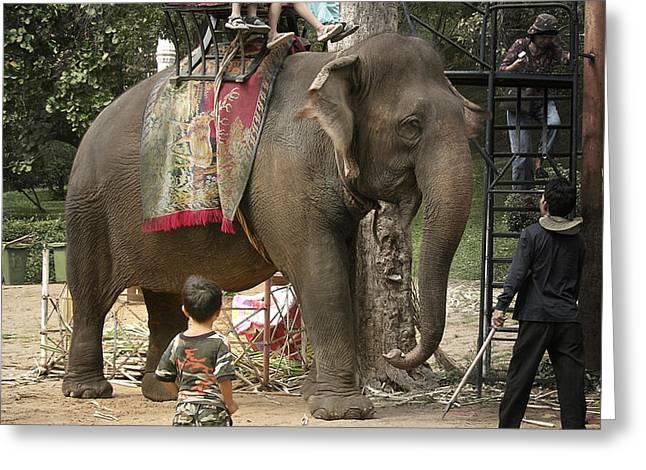 Elephant Ride Greeting Card