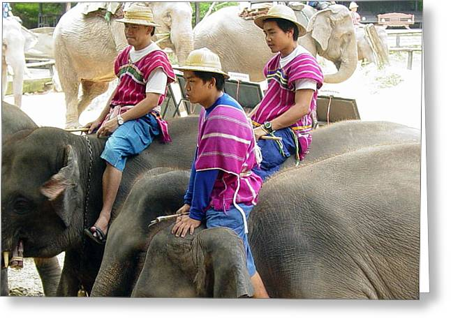 Elephant Riders Greeting Card by Sue Ann Rybarczyk
