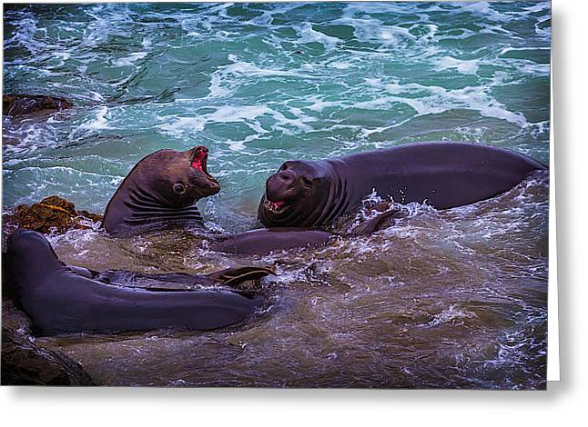 Elephant Seals Fighting In The Surf Greeting Card by Garry Gay