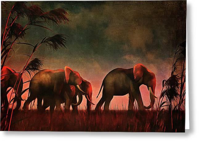 Elephants Walking Together Greeting Card
