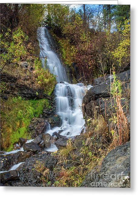 Elk Creek Waterfall Waterscape Art By Kaylyn Franks Greeting Card