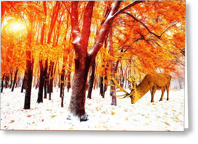 Elk Grazing In Snow Greeting Card by Laura D Young
