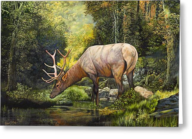 Elk Study Greeting Card