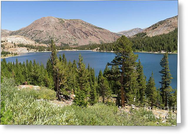 Ellery Lake Tioga Pass Yosemite California Dsc04314 Greeting Card by Wingsdomain Art and Photography