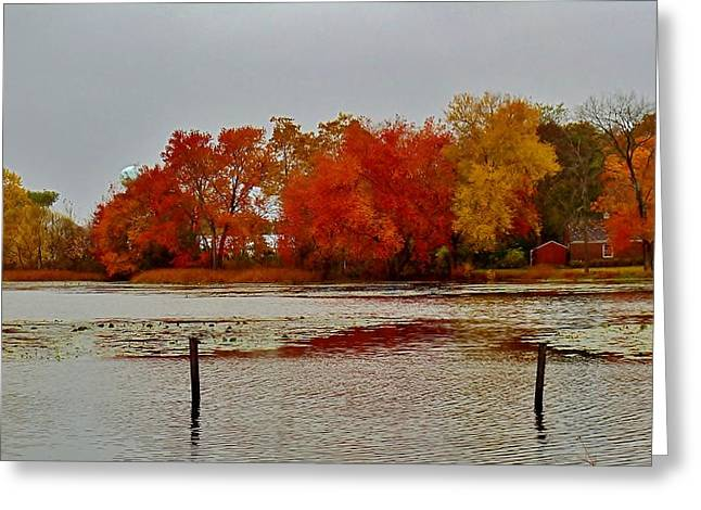Greeting Card featuring the photograph Elmer Lake In Autumn by Ed Sweeney