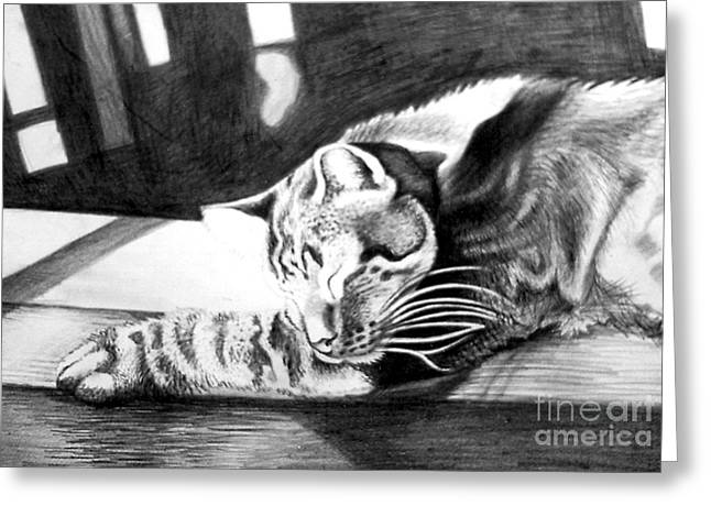 Elmer The Cat Greeting Card