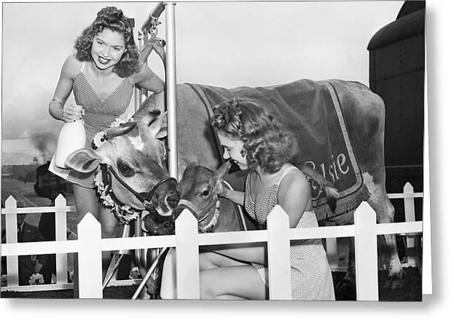 Elsie The Cow Visits Sf Greeting Card