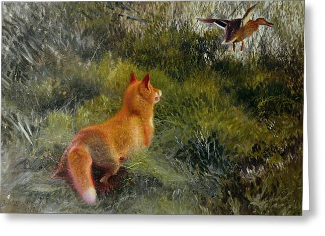 Fleeing Greeting Cards - Eluding the Fox Greeting Card by Bruno Andreas Liljefors