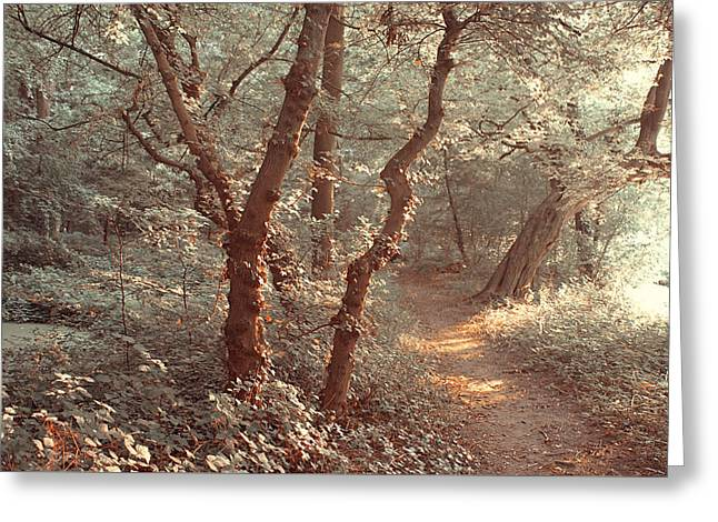 Elvish Forest. Nature In Alien Skin Greeting Card