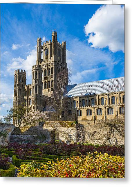 Ely Cathedral And Garden Greeting Card