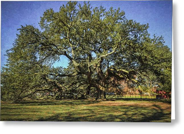 Emancipation Oak Tree Greeting Card