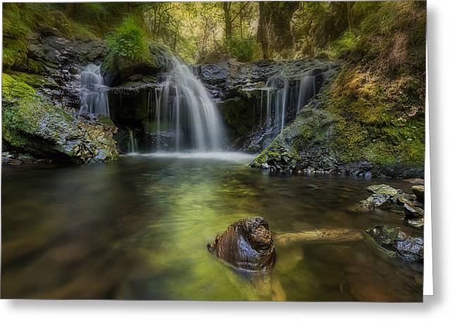 Emerald Falls Greeting Card by David Gn