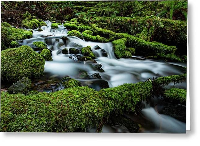 Emerald Flow Greeting Card