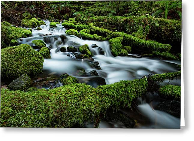 Emerald Flow Greeting Card by Edgars Erglis