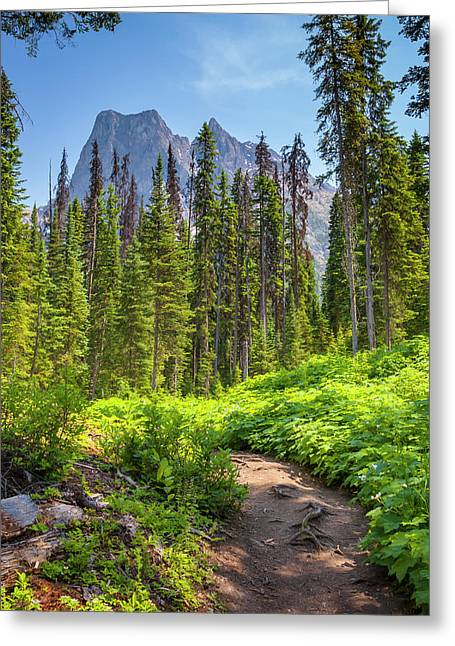Greeting Card featuring the photograph Emerald Lake Circuit by Mark Mille