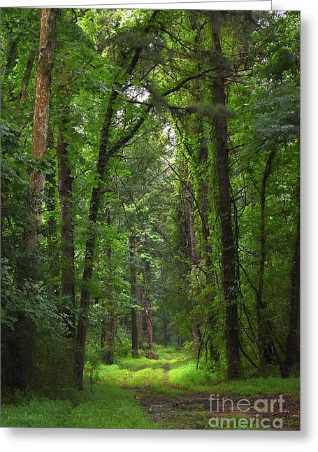 Emerald Road Greeting Card by Skip Willits