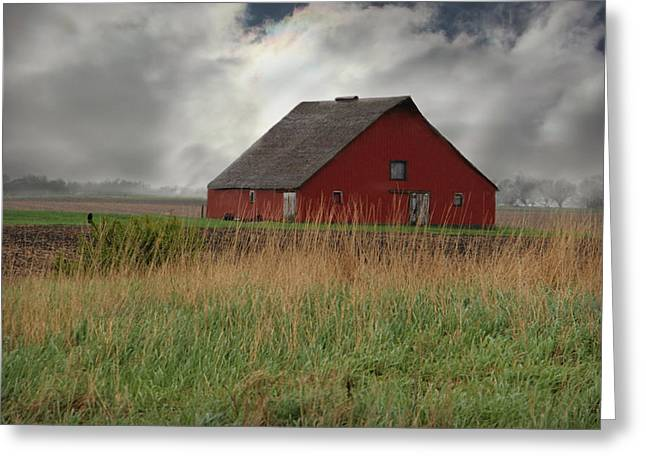 Emergence From Fog And Rain Greeting Card by Kathy M Krause