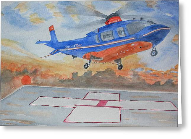 Emergency Landing Greeting Card by Warren Thompson