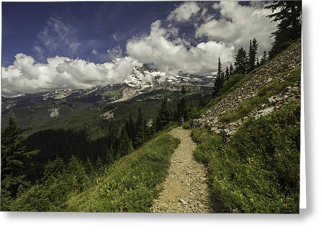 Emerging Above Timberline Greeting Card