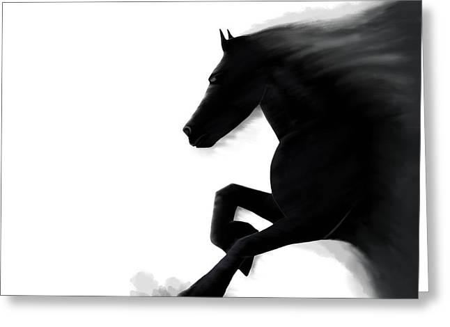 Emerging Stallion Greeting Card by Andrew Jackson
