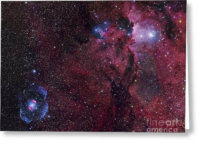 Emission Nebula Ngc 6188 Star Formation Greeting Card